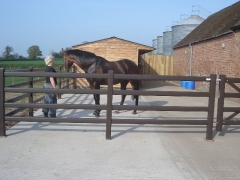 Fensys UPVC equestrian stables fence fencing fence supplier manufacturer extrusion installer ranch picket garden balustrade panel pvc wood effect gate plastic upvc